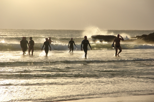 dawn_swimmers