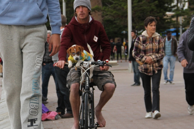 dog_bike